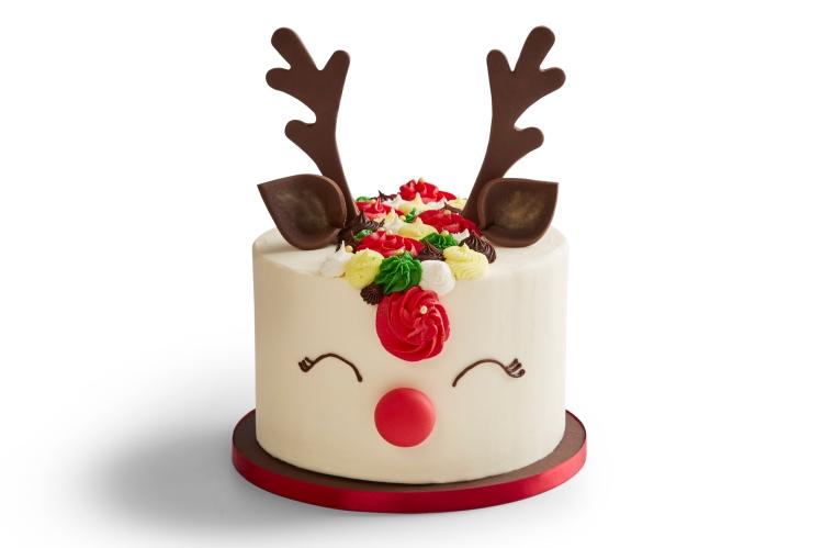 Rainbowdeer cake xmas19_rev0